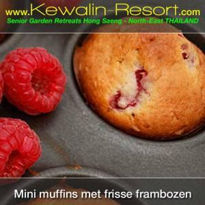 Mini-muffins-met-frisse-frambozen